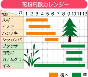 花粉飛散カレンダー.jpg